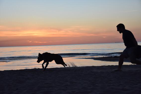 Lucky à la plage