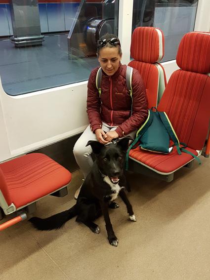 Lucky voyage en métro