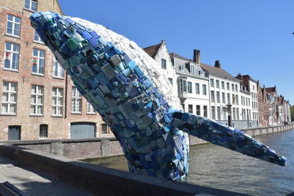 Bruges - baleine